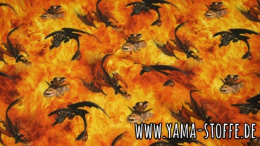 Jersey Dragons Feuer